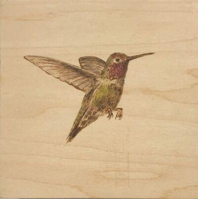 Alexandra Bowers, 'Anna's Hummingbird', 2019