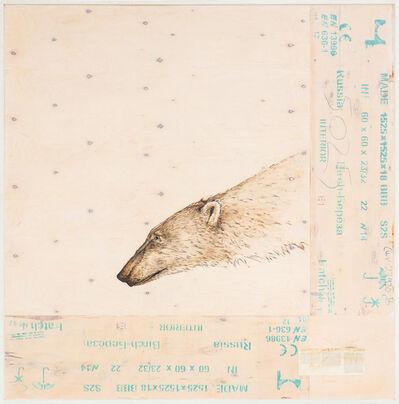 Joseph Rossano, 'EDNA: Ursus maritimus (Polar Bear)       ', 2015