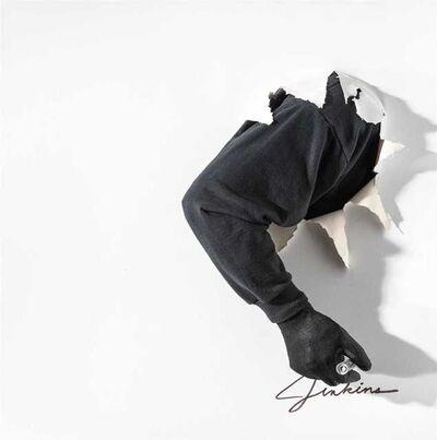 Mark Jenkins, 'Untitled'