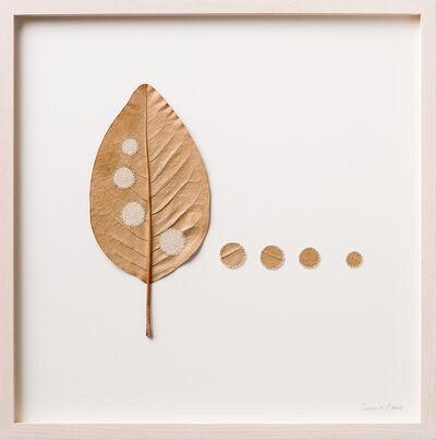 Susanna Bauer, 'Four Circles', 2016