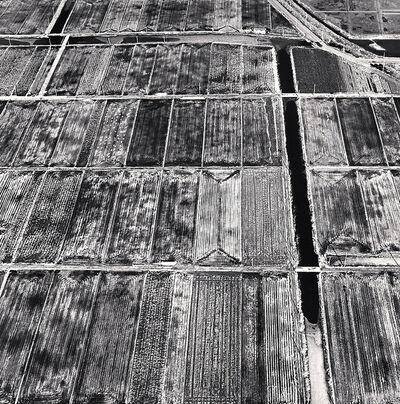 Michael Kenna, 'Planted Fields, Jaeun-do, Shinan, South Korea', 2013