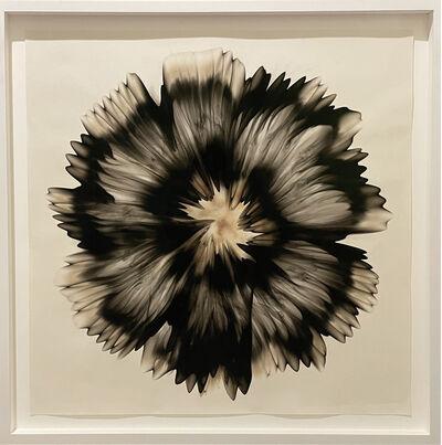 Dennis Lee Mitchell, 'Untitled (51.8)', 2020
