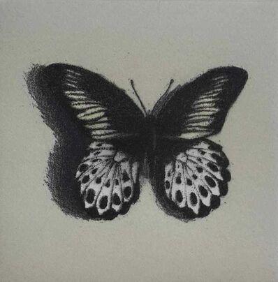 Lisa Milroy, 'Butterfly III', 1940