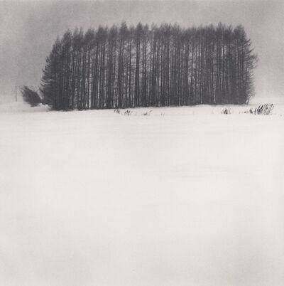 Michael Kenna, 'Trees in Snowstorm, Wakoto, Hokkaido, Japan', 2003