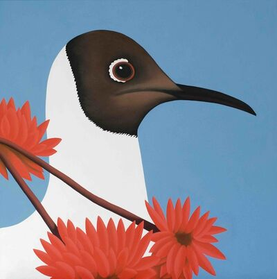 Jeroen Allart, 'Black headed gull - animal painting', 2016