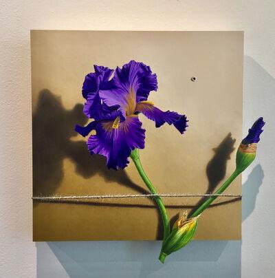 Otto Duecker, 'Nature Bound #4', 2019