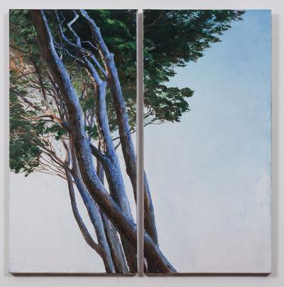 Adam Cvijanovic, 'Roman Pines', 2015