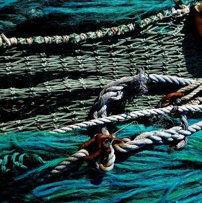 Kat O'Neill, 'Ropes', 2017