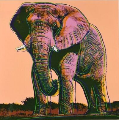 Andy Warhol, 'ENDANGERED SPECIES: AFRICAN ELEPHANT FS 11.293', 1983