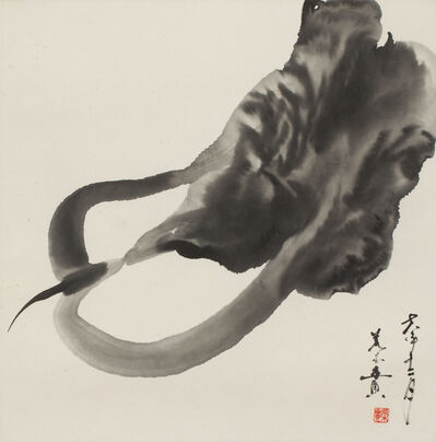 Minol Araki, 'Chinese Cabbage (MA-269)', 1978