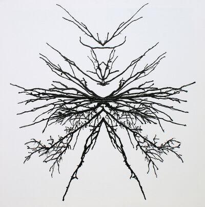 Irena Orlov, 'Tree Surrealism 57', 2017