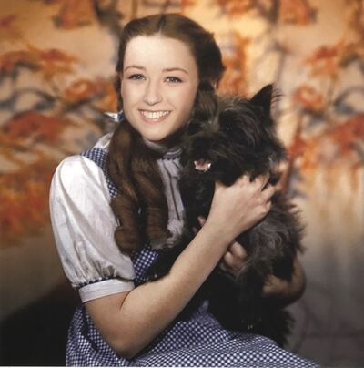 Mychael Barratt, 'Cindy Sherman's Dog', 2020