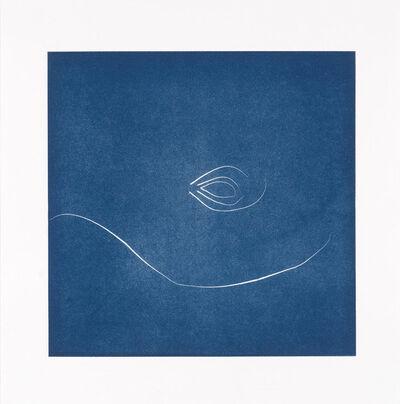 Nina Katchadourian, 'Whisker Print (4A)', 2013
