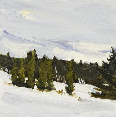 Susan Headley Van Campen, 'Fresh Snow and Arborvitae in Early April ', 2017