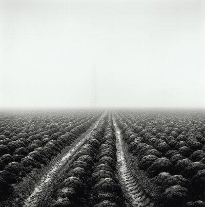 Paul Hart, 'Station Farm', 2017