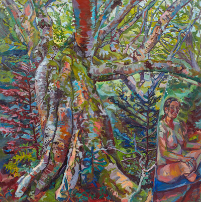 Jenny Toth, 'The Old Birch', 2012