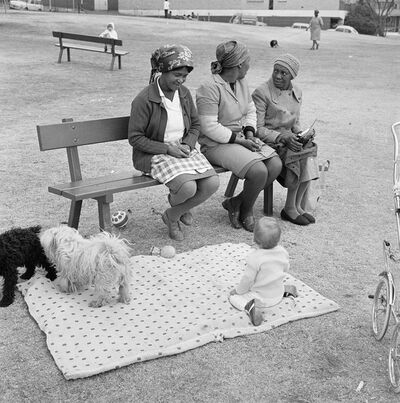 David Goldblatt, 'Baby with child-minders and dogs in the Alexandra Street Park, Hillbrow', 1972
