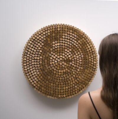 Daniel Rozin, 'Peg Mirror', 2007