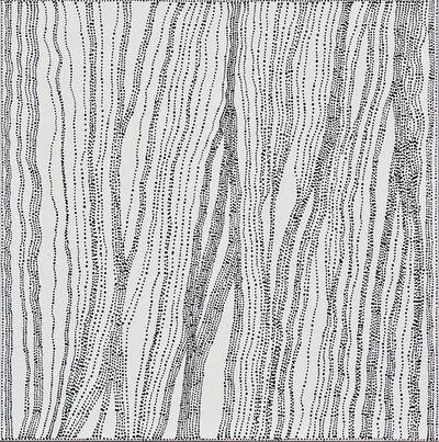 Dorothy Napangardi, 'Salt on Mina Mina', 2006