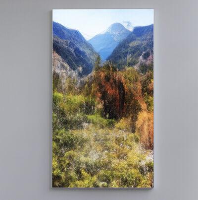 Refik Anadol, 'Nature Dreams A', 2020