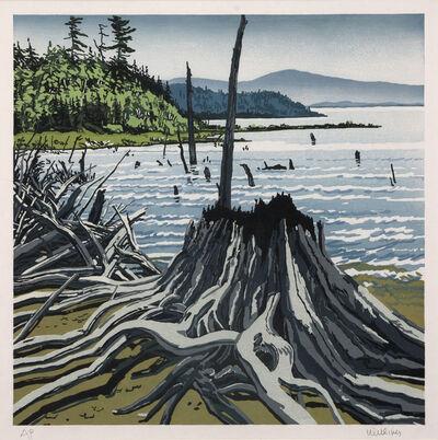 Neil G. Welliver, 'Flotsam Allagash', 1995