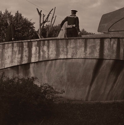 Boris Savelev, 'Leningrad Zoo', 1980