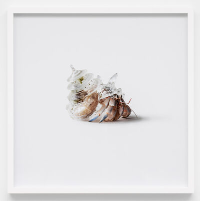 """Aki Inomata, 'Why Not Hand Over a """"Shelter"""" to Hermit Crabs? –Border- (Temple of Heaven, China)', 2016/2020"""