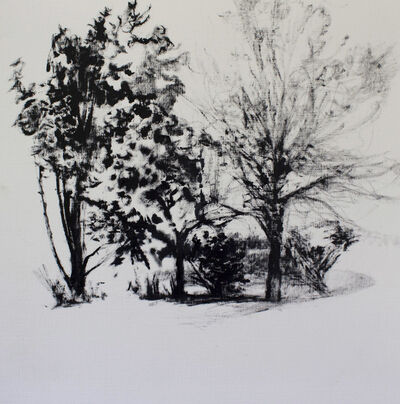 Dorothy Frey, 'Promised Land Study Spring', 2020