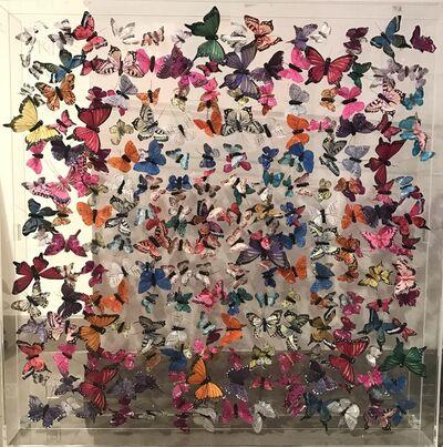 Michael Olsen, 'Butterflies', 2017