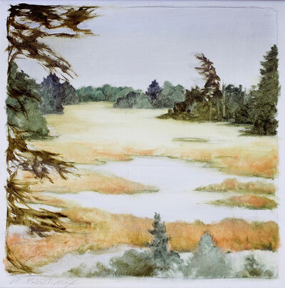 Marguerite Robichaux, 'Barters Island Bog', 2018