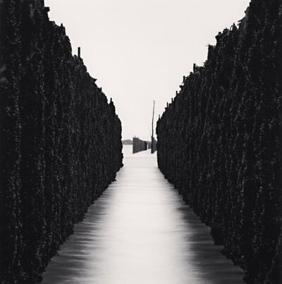 Michael Kenna, 'SHELLFISH WALLS, CHAUSEY ISLANDS, FRANCE, 2007', 2007