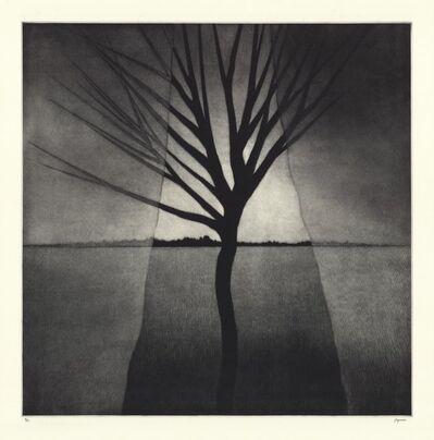 Robert Kipniss, 'Landscape w/curtains & crooked tree.', 2016