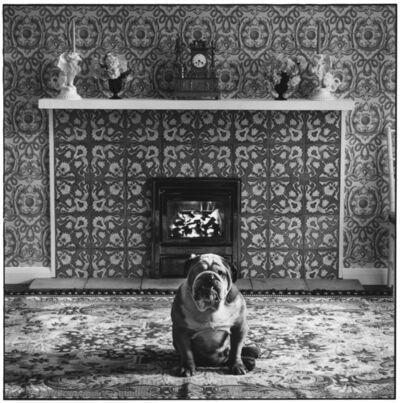 Elliott Erwitt, 'London, England', 1966