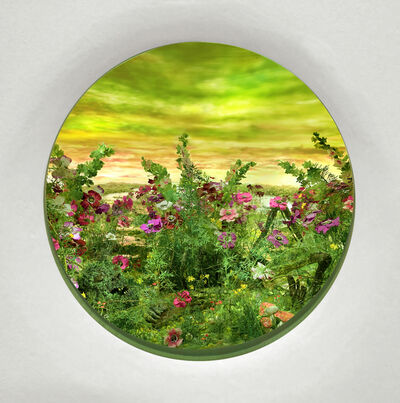 Patrick Jacobs, 'Moonlit Bog with Anemones and Hollyhock (Diorama viewed through 7.5 inch window)', 2020