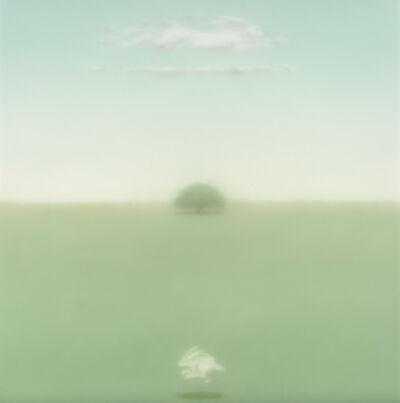 Maurizio Lanzillotta, 'Conejo y Nube', 2014