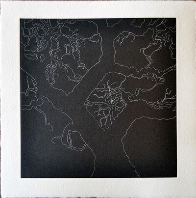 Nate Cassie, 'Tree Series: Olmos II', 2011