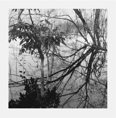 Jennifer Marshall, 'Reflections I', 2008