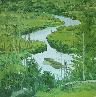 Neil G. Welliver, 'Study for Untitled Stream in Brigg's Meadow', 1970-1975
