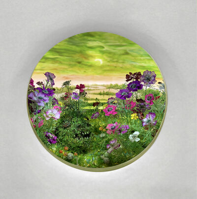 Patrick Jacobs, 'Green Moonlight with Anemones (Diorama viewed through 2.75 inch window)', 2020