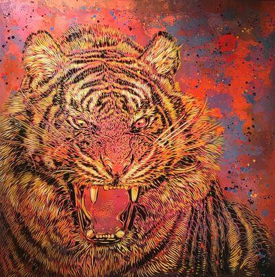C215, 'Tiger', 2017