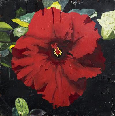 Hernan Salamanco, 'Chinese Red Rose', 2016