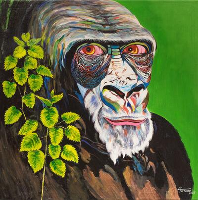 Kitoko, 'Gorilla Series, Untitled.', 2017