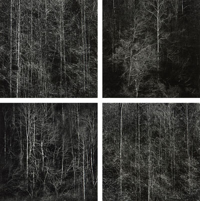 Harry Callahan, 'Georgia Mountains, Winter', 1988-1989