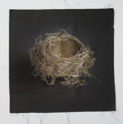 Kate Breakey, 'Nest 13', 2010-2019