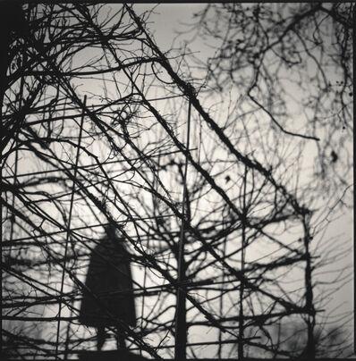 Hiroshi Watanabe, 'Grosvenor Square, London, England', 2005