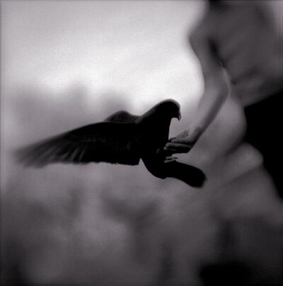 Keith Carter, 'Open Hand', 2004