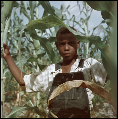 Gordon Parks, 'Untitled, Shady Grove, Alabama (37.028)', 1956