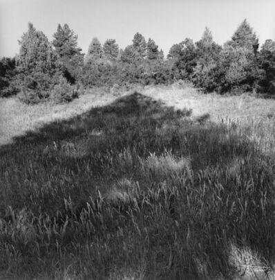 Lee Friedlander, 'Colorado', 2003/printed 2004