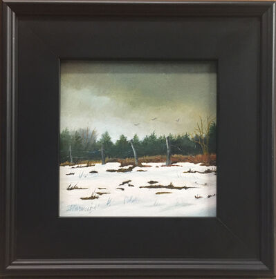 Judy Reynolds, 'Cedars', 2015