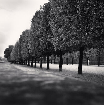Michael Kenna, 'Tuileries Gardens, Study 3, Paris, France', 2011